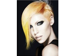Schwarzkopf Prof Seeks Models- 3x Aus. Colourist OTY Matt Clements-11 Sept.