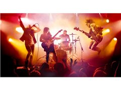 Bass Player Required for Well Established Cruise House Band