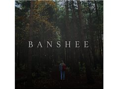 Seeking Actress to play Child's Voice in Short Horror Film 'BANSHEE'