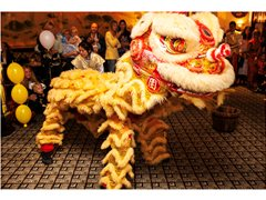 Lion Dancers and Percussionist Required for Chinese New Year