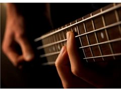 Professional Bass Players For Cruise Contracts