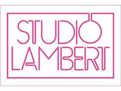Studio Lambert are looking for a fun individual for an exciting E4 series