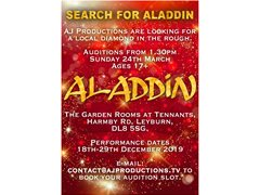 Aladdin Pantomime Actor