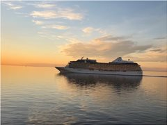 Duo Partner required for Cruise Work 2019