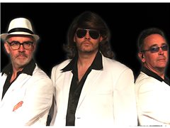 Bass Player Wanted for Bee Gees Tribute Show with Tenor Harmonies