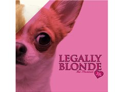 Legally Blonde Jr - Boys Audition (rehearsals starting next week!)