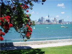 Couple Wanted for Top Auckland Attractions Tourism Photo/Video Shoot