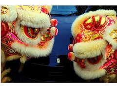 Dancers Required for Lion Dance Team