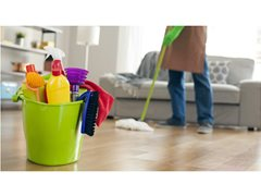 Amazing New House Cleaning Show Needs Fun Big Personalities