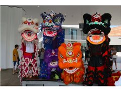 Lion Dancers in January