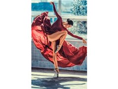 Models Needed for a Flamenco Dance Project