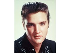 Male actor that resembles Elvis Presley age 19-35 for Biopic Doc
