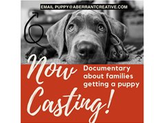 People Who Are Getting a Puppy Wanted for Groundbreaking Documentary! $3300