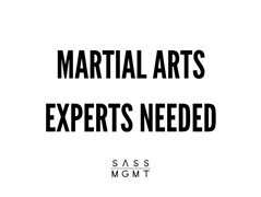 Martial arts experts needed - sydney!