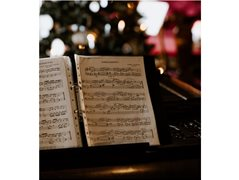 Singer Required for a Christmas Corporate Video - £350