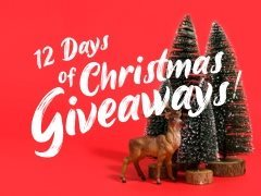 Be in to Win a Christmas Present from StarNow!