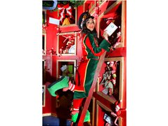Elves Needed for Christmas Grotto