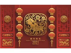 Family to Discuss and Show Chinese New Year Traditions for Online Content