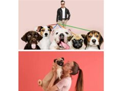 Two Actors Required for Pet Fashion Brand Film $750