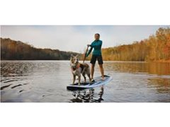 Seeking Paddle Boarding Dog & Owner for TVC $2700+