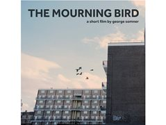 Multiple Roles required for Short Film 'The Mourning Bird'