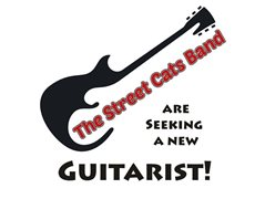 Experienced Guitarist Wanted for Street Performing Band