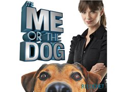 It's Me or the Dog is Back! Do You Have a Problem Pooch Running Your Home?