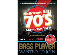 Bass Player Wanted For New Agency Backed 70s Glam Show
