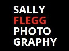GIVEAWAY: Be in to Win a Headshot Package with Sally Flegg!!