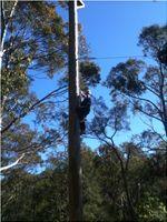 High Ropes - Power Fan at Vision Valley